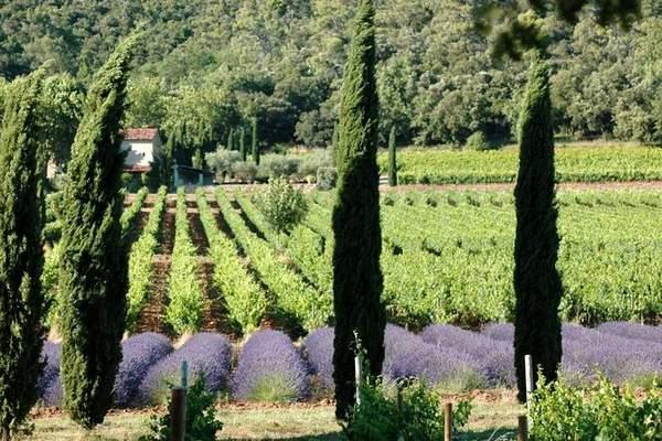 Coteaux Aix en Provence