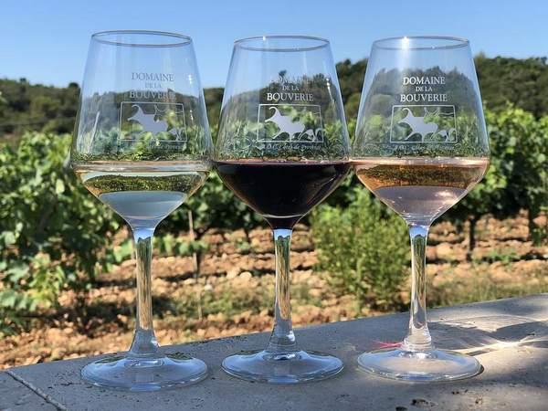 Degustation vin de Provence